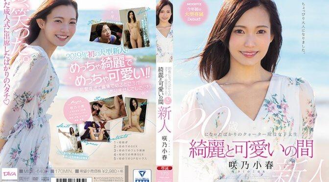 20歳になったばかりのクォーター現役女子大生 綺麗と可愛いの間 Koharu Sakuno
